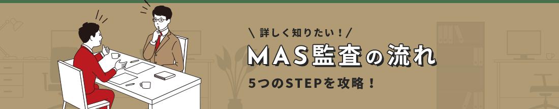 MAS監査の流れ 5つのSTEPを攻略!